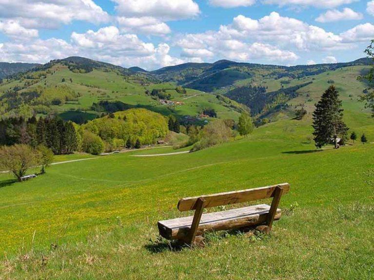 Aussicht Bank Landschaft Münstertal