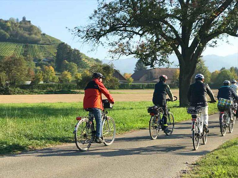 Fahrradfahren im Münstertal Ruine Staufen im Breisgau